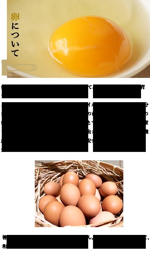 卵について